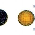 Uued tõendid aegruumi eelistatavast suunast esitavad väljakutse kosmoloogilisele printsiibile