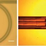Miniatuurne resonaator lubab optilistele analüüsmeetoditele uut hoogu