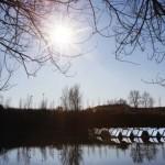 Insenerid valmistasid veel ujuvad päikesepaneelid
