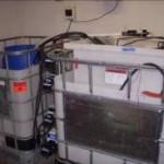 """""""Kaks ühes"""" seade kasutab reovett kütusena elektri tootmiseks ja reovee puhastamiseks"""