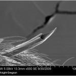 Sääsest inspireeritud mikronõel