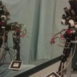 Peeglitesti läbiv robot