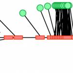 Keerukad süsteemid tekivad põhjuslikest entroopilistest jõududest