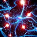 Laser jäljendab valguse abil bioloogilisi neuroneid