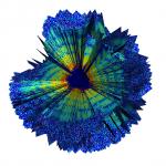 Röntgen salvestas 3D pildi viirusest